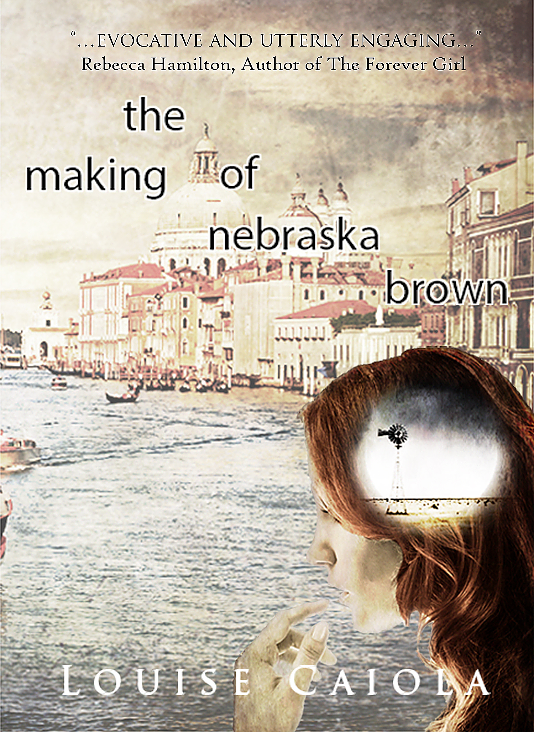 NebraskaBrown ebook